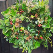 Christmas Wreath Extravaganza - Lloyd Hall image