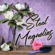 Steel Magnolias image