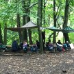 Skills Share: How to develop/maintain a busy Forest School site image