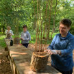Woodland Willow Weaving - Bletchingley image