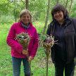 Willow Cone Planters @ Sussex Prairie Gardens image