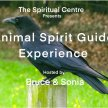 Animal Spirit Guide Experience image