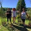 Plant Support Workshop - Bridgeham Wood image