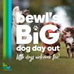 Bewl's Big Dog Day Out image