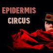 Epidermis Circus image