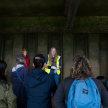 Archaeological Foreshore Walks @ Bermondsey image