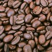 From Seed to Cup with Deeper Roots Coffee image