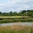 DEBRA Ladies' Golf Day at Clandon Regis image