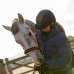 Equine Facilitated Learning - Extending What Horses Have to Offer image