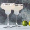 Cinco de Mayo Margarita Mixer image