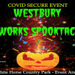 Low noise musical Fireworks Spooktacular. Fireworks at 7pm image