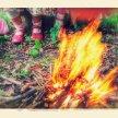 Black Grove Summer Woodland School 2020 image