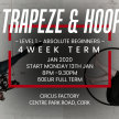 Trapeze and Aerial Hoop  - Beginners Monday 8pm - 9.30pm image