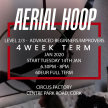 Aerial Hoop - Level 2/3 Advanced Beginner / Improver Tuesdays 6.30pm - 8pm image