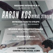 Aerial Straps: Weekend Intensive with Aaron Kos - Oct 6th x 3 workshops from 10am - 4pm image