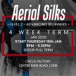 Aerial Silks: Level 2 Advanced Beginners: 4 Week Term Start 16th Jan 8pm - 9.30pm image