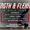Strength in Flexibility with Mariana Leal - Saturdays 4.15pm - 5.15pm image