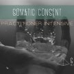 Somatic Consent Practitioner Intensive - Berlin image