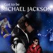Michael Jackson Tribute Night image