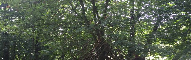 Forest School Camp - Thursday 22nd August