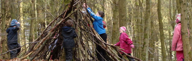 Harrogate / Wetherby January Holiday Forest School: 5-11 year olds