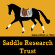 Saddle Research Trust 4th International Conference 'Welfare & Performance of the Ridden Horse: The Future' image