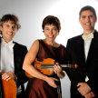 Sunday Concert: Trio des Alpes image