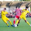 Darlington FC v Altrincham image