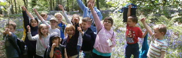 St Ives Summer Forest School: 5-11 year olds