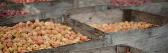 Olympic Peninsula Apple and Cider Festival