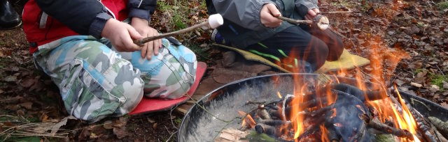 Ilkley Easter Forest School: 9-14 year olds