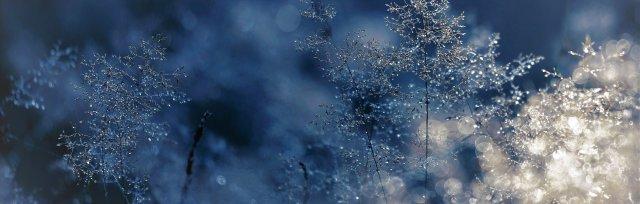 Surviving Spiritual Winters