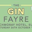 The Gin Fayre: Elgin image