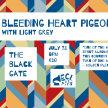 Eclectics: Bleeding Heart Pigeons w/ Light Grey image