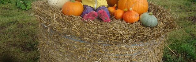 Spooky Spilmans Halloween Event