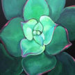 Brunch & Paint! Garden Succulant at 2pm $29 image
