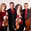 Sunday Concert: Louise Winter & Primrose Piano Quartet image