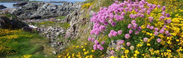 2019 Scottish Botanists' Conference
