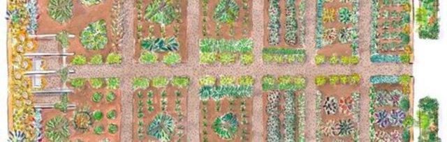 Planning Your Best Garden Ever