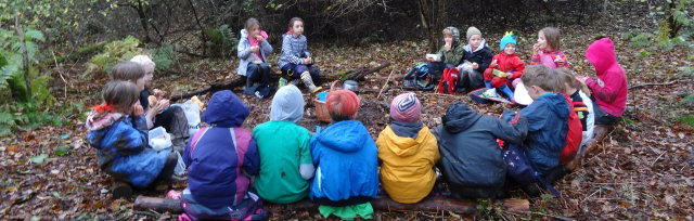 St Ives February Half Term Forest School: 5-11 year olds