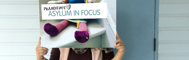 Asylum in Focus