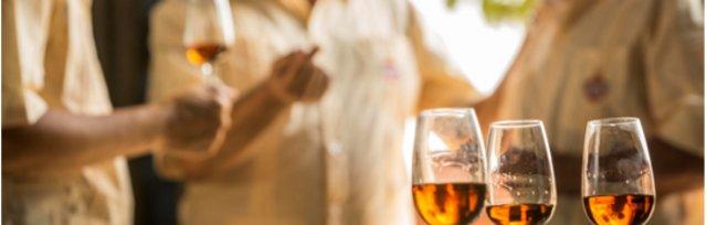 Havana Club Rum Tasting Experience