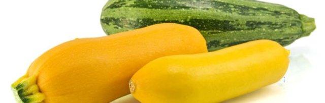 Ingredient Spotlight: Summer Squash & Zucchini