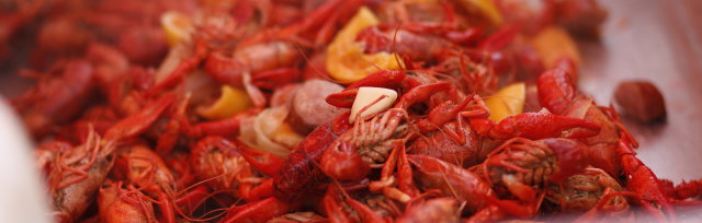 2020 Crawfish Cookin' For A Cause