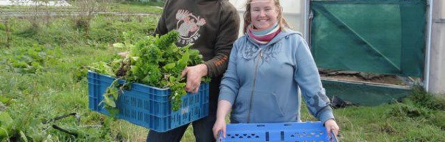 Farming For Nature Walk with Thomas & Claire O'Connor - July (Co.Kerry)