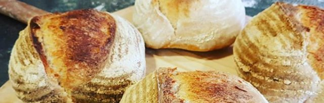 Real Bread: Introduction to Sourdough