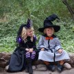 Wizard School at West Boldon Lodge image