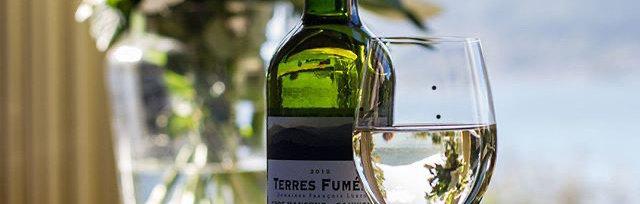 Wine Tasting Celebration