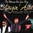 The Bee Gees No1 tribute band Stayin' Alive image