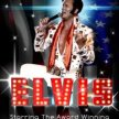 Elvis Tribute image